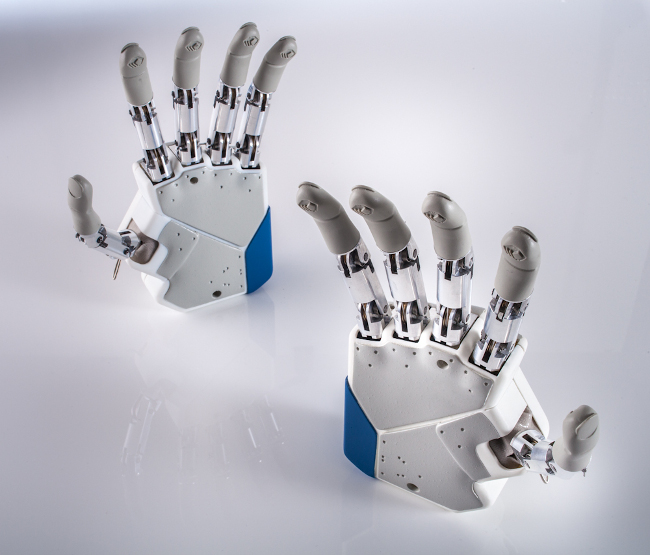 Azzurra_01-Artificial Hands_1