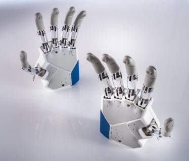 Azzurra_01-Artificial Hands_1